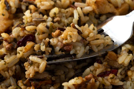 Close view of cooked wild rice with chicken and pecans with a fork in the food illuminated with natural light.