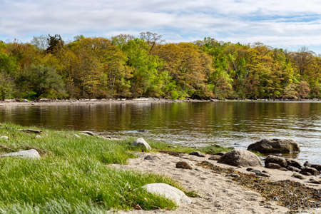 Distant view of the shoreline of Sears Island in Searsport Maine on a late spring day.