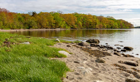 Distant view of the shoreline and peninsula of Sears Island in Searsport Maine on a late spring day.