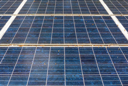Close view of several interlocked solar panels with leaves and pollen on the surface. 版權商用圖片