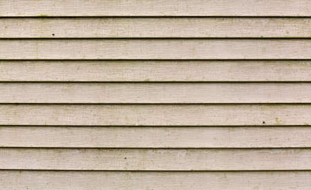 Wide view of several rows of beige vinyl siding with a large amount of green mold growing on the surface.