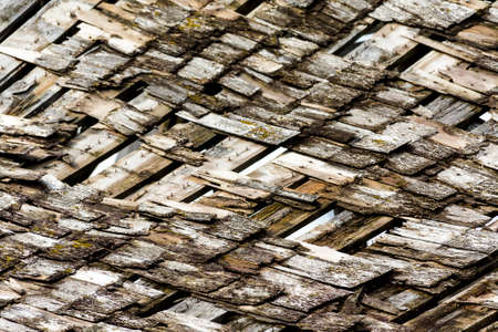 cedar shakes: layers of old moldy, broken house wooden shakes