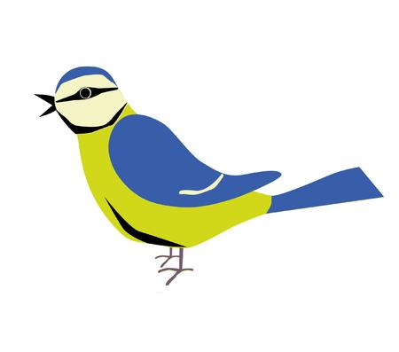 parus: An illustration of a blue tit