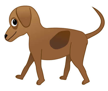 A cute brown walking dog Stock Vector - 26076095