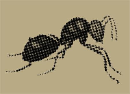 exoskeleton: A raster illustration of an ant Illustration