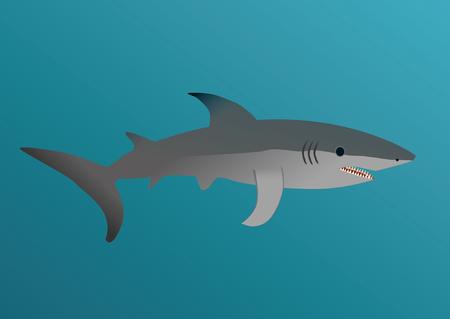 jaws: Shark Illustration