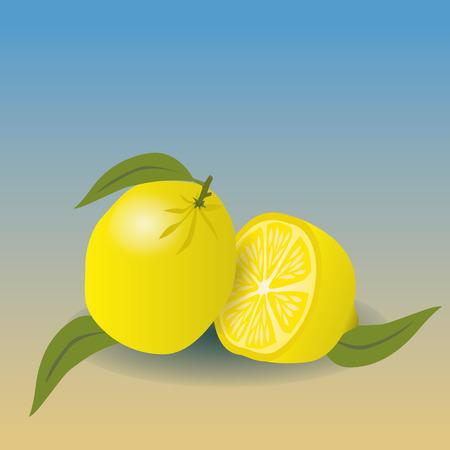 lemons: lemons Illustration