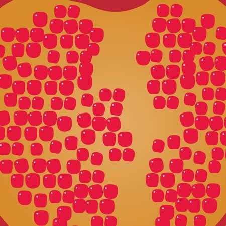 salubrious: pomegranate Illustration