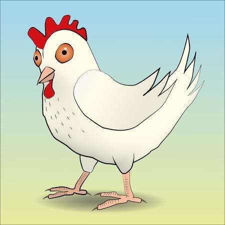 cockscomb: chicken