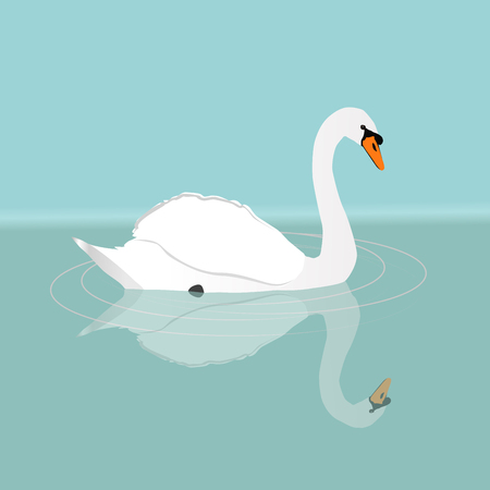 A white swan swimming in the water Illustration