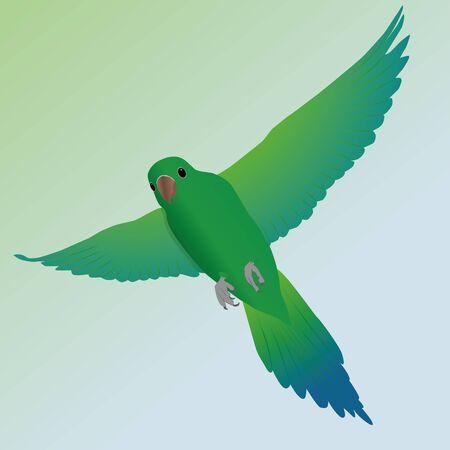 Vliegende groene parakeet