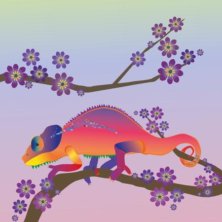 Rainbow chameleon Illustration
