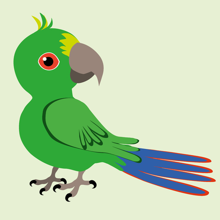 Parrot Vector illustration isolated on green background.