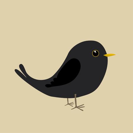 Cute blackbird