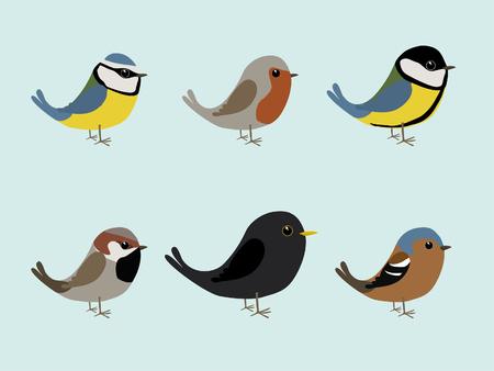 Oiseaux chanteurs mignons
