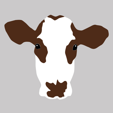 A portrait of cow head.