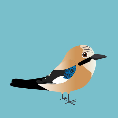 An illustration of a cute Eurasian jay