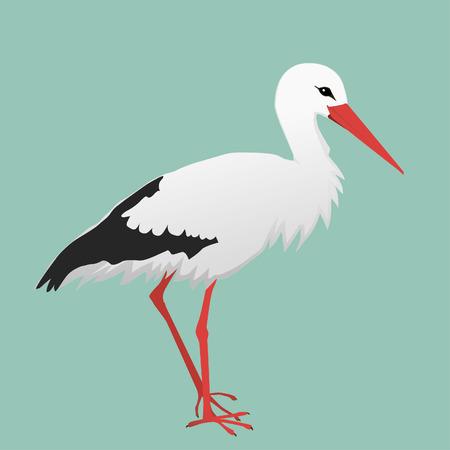 Un'illustrazione di una cicogna.