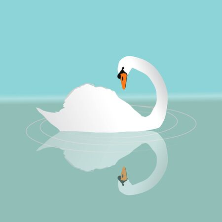 A white swan swimming in the water Иллюстрация