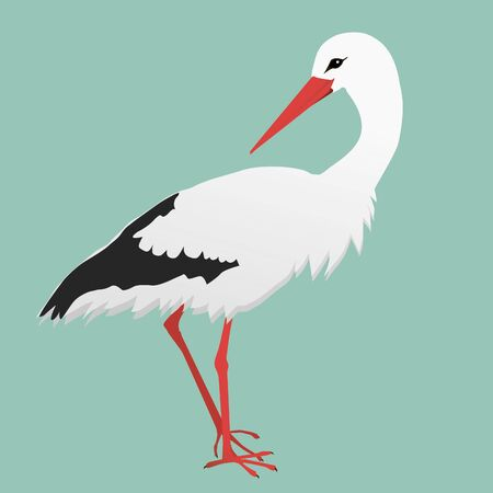 An illustration of a stork.