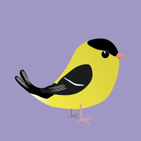 An American goldfinch comic illustration