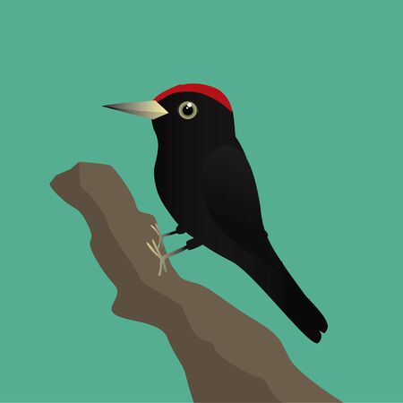 A vector illustration of a black woodpecker on a tree trunk with a green background Ilustracja