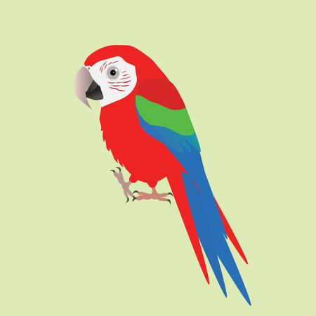 An illustration of a funny and cute green winged macaw, cartoon style