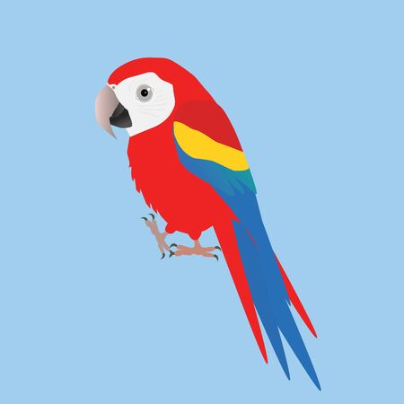 An illustration of a funny and cute macaw scarlet, cartoon style