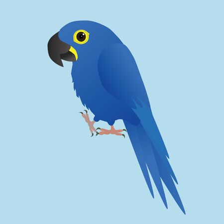 An illustration of a funny and hyacinth macaw, cartoon style