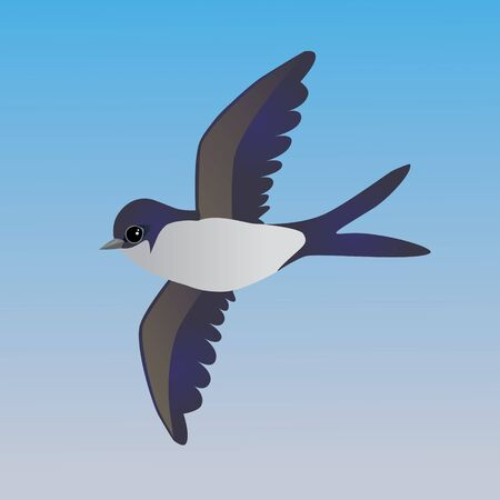 An illustration of a flying cute common house martin