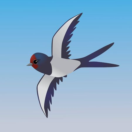 An illustration of a flying cute barn swallow Ilustração