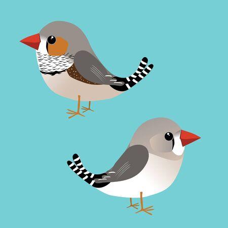 A digital illustration of a cute male and female zebra finch