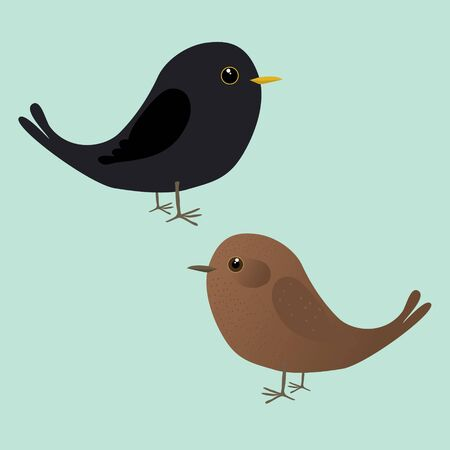 A couple of cute blackbirds illustration. It is a male and a female bird Иллюстрация