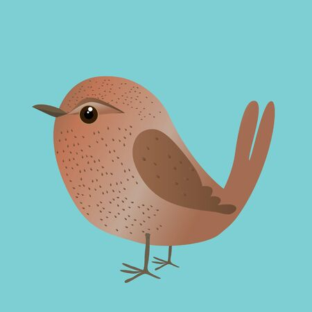 An illustration of a cute wren. Cartoon style