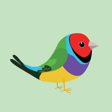An illustration of a cute gouldian finch on a soft green background. It's a male bird.