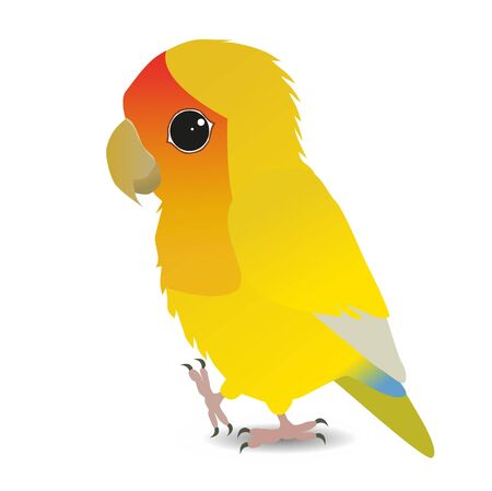 A digital vector illustration of a cute yellow peach faced lovebird.