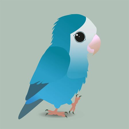 A vector illustration of a cute blue peach faced lovebird