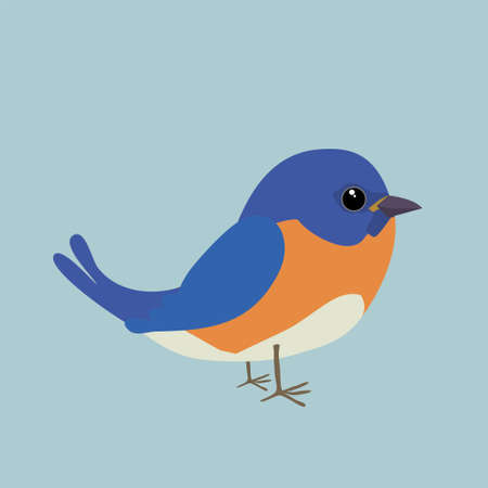 A cute bluebird comic illustration. Cut out on a blue background.