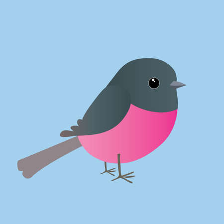 A cute pink robin comic illustration. Cut out on a blue background.