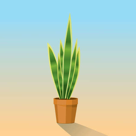 A vector illustration of a snake plant in a terracotta pot. 矢量图像