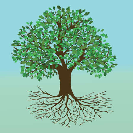 An oak tree of life with a full empty crown and roots. The background is an icy blue and green gradient 矢量图像