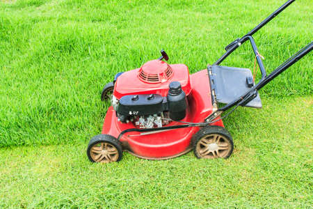 lawn mower: Lawnmower cutting grass in the garden Stock Photo