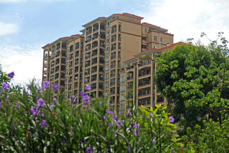 City Building and flower bush 新聞圖片