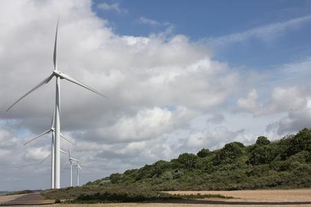 onshore: onshore wind turbines at coast