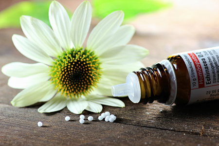 homeopath: Scattered homeopathic Echinacea pills on wooden background Stock Photo