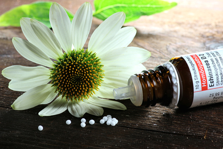 homeopathic: Scattered homeopathic Echinacea pills on wooden background Stock Photo