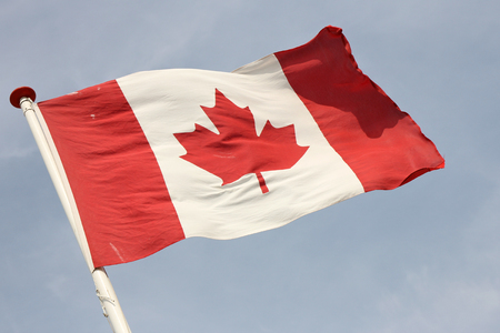 canadian flag: Canadian flag blowing in the wind