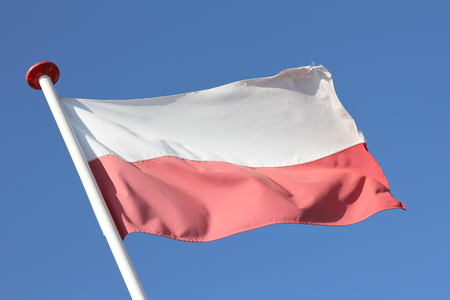 polish flag: Polish flag blowing in the wind