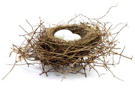 nido de pájaro con dos huevos aislado sobre fondo blanco