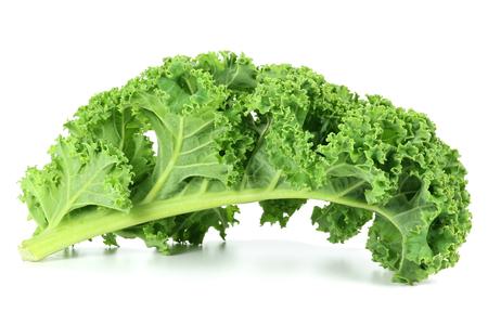 brassica: curly kale on white backgorund
